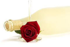 Wet red rose with a empty champagne glass in front. Of a dull prosecco bottle on white background Royalty Free Stock Photography