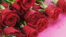 Wet Red Roses Falling Down stock video footage