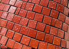 Wet red tiles Royalty Free Stock Images