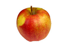 Wet red-yellow apple. Isolated on white background stock images