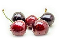 Wet ripe fresh cherries isolated on white background. Ripe fresh cherries isolated on white background Royalty Free Stock Photos