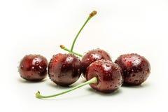 Wet ripe fresh cherries isolated on white background. Ripe fresh cherries isolated on white background Royalty Free Stock Photo