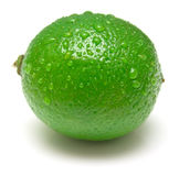 Wet ripe lime. Ripe lime covered by drops of water. Isolation on white. Shallow DOF Royalty Free Stock Photo