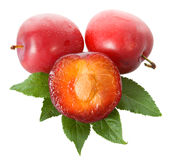Wet ripe plums Royalty Free Stock Photography