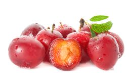 Wet ripe plums Royalty Free Stock Image