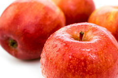 Wet ripe red apple Royalty Free Stock Photos