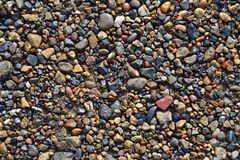 Wet river pebbles texture - natural background Royalty Free Stock Photos