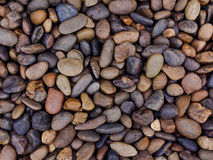 Wet river stones background Royalty Free Stock Photo