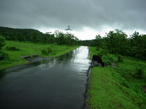 Wet road in countryside. Wed road receding through green countryside with dark cloudy sky Stock Image
