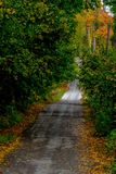Wet Road in the Fall. Biking, Hiking, Walking trail through the woods stock photo