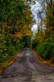 Wet Road in the Fall. Biking, Hiking, Walking trail through the woods stock image