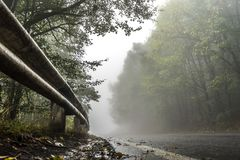 Wet road in the forest, fence and roadside. Horizontal Stock Photo