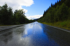 Wet road. After the rain Royalty Free Stock Image