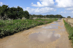 Wet road scenic landscape. Dirty wet road after rain at countryside in Israel Stock Images