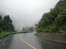 Wet road. Twist. Misty morning. Stock Photos