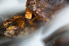 Wet rock in river Stock Photography