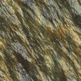 Wet rock surface Stock Photography