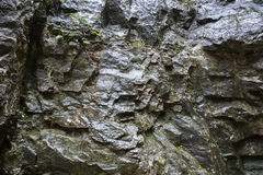 Wet rock surface Stock Images