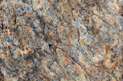 Wet rock texture Royalty Free Stock Image