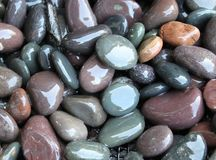 Wet rocks Royalty Free Stock Images