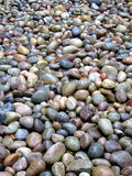 Wet rocks. In various color royalty free stock images