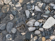 Wet rocks forming a pattern in a river Royalty Free Stock Photography