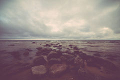 Wet rocks on the shore of baltic sea Stock Photography