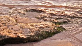 Wet Rocky surface Royalty Free Stock Photos