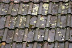 Wet roof tile background Stock Photo