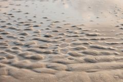 Wet sand beach texture for background Stock Photo
