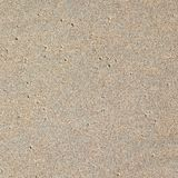 Wet sand on the beach. With algae and shells stock photography