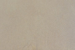 Wet sand. Beige texture. Can be used as background Royalty Free Stock Images