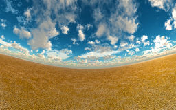 Wet Sand Blue Sky Background Royalty Free Stock Photo