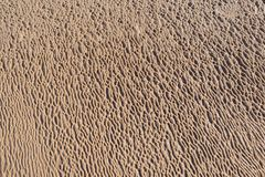 Wet sand organic natural texture pattern beach wave backdrop Stock Photography