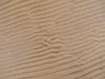 Wet Sand Ripples Stock Photo