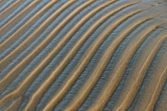 Wet sand. Royalty Free Stock Photo