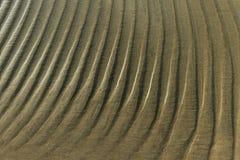 Wet sand. Stock Image