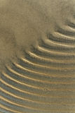 Wet sand. Stock Photos