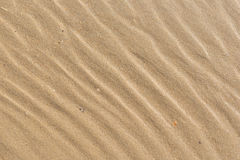 Wet sand texture on the beach. Stock Photos