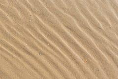 Free Wet Sand Texture On The Beach. Stock Photos - 35850593