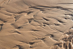 Wet sand texture Stock Image