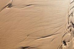 Wet sand texture Stock Photos