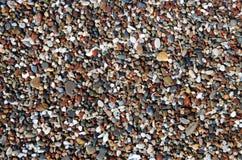 Wet sea pebble Stock Image