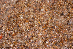 Wet sea sand, close up view Royalty Free Stock Image