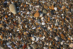 Wet sea stones. Stock Photography