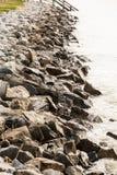 Wet Seawall in Morning Light Stock Image