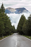 Wet shiny road, low cumulus clouds Royalty Free Stock Photos