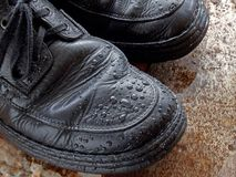 Wet Shoes. Pair of wet shoes Stock Image