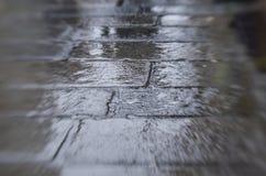 Wet sidewalk Royalty Free Stock Photo