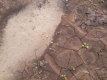 Wet soil Royalty Free Stock Images